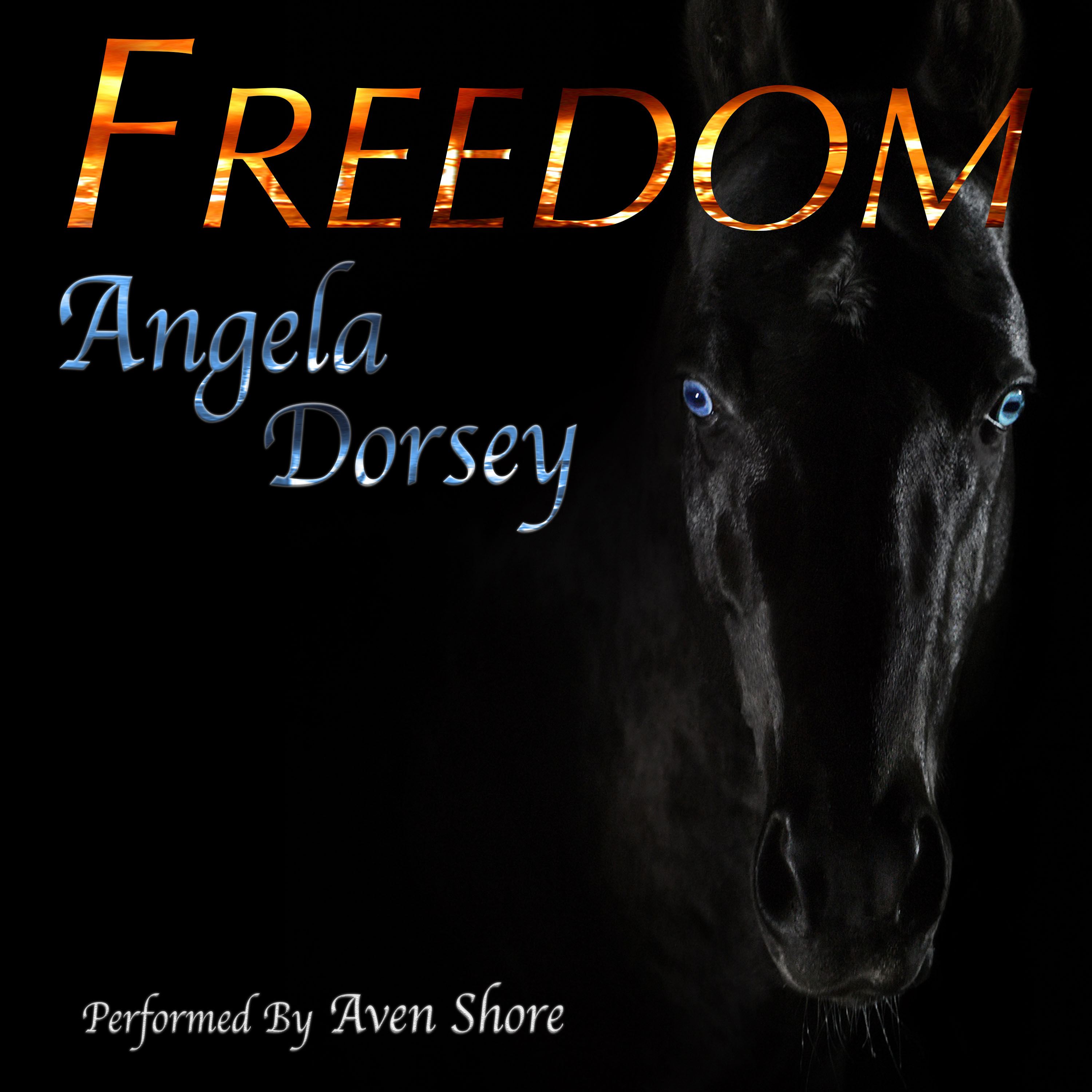 Audiobook cover for the juvenile fiction novel Freedom aka A Horse Called Freedom by Angela Dorsey