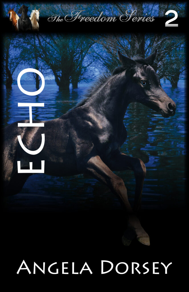 Echo second in the freedom series by Angela Dorsey